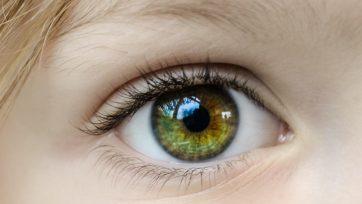 """Oculus: """"Maasstad Ziekenhuis weer blij met Maatbril"""""""